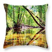 Reflected Forests Throw Pillow
