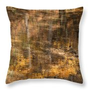 Reflected Gold Throw Pillow