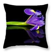 Reflected Iris Throw Pillow