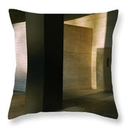 Reflected Light And Shadow Throw Pillow