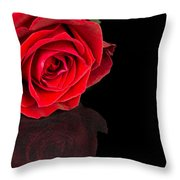 Reflected Red Rose Throw Pillow