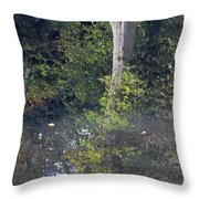 Reflected Tree Throw Pillow