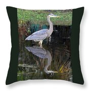 Reflecting Great Blue Heron Throw Pillow