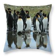 Reflecting King Penguins Throw Pillow
