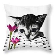 Reflecting Kitten Throw Pillow