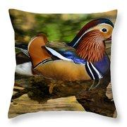 Reflecting Mandarin Throw Pillow
