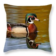 Reflecting Nature's Beauty Throw Pillow