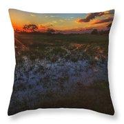 Reflecting On A Duba Plains Sunset Throw Pillow