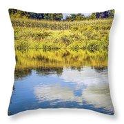 Reflecting On Corn Throw Pillow