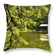 Reflecting On The Beauty Of The Woodlands Throw Pillow