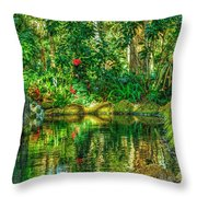 Reflecting On The Day Throw Pillow