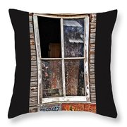 Reflecting On The Inside And Outside Throw Pillow