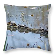 Reflecting On The Nice Spring Weather Throw Pillow