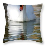 Reflecting On Yourself Throw Pillow