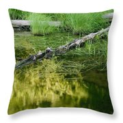 Reflecting Pond Glacier National Park Painted Throw Pillow