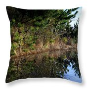 Reflecting Puddle At The Beach Throw Pillow