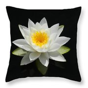 Reflecting Water Lilly IIi Throw Pillow