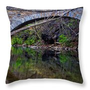 Reflecting While Fishing Throw Pillow