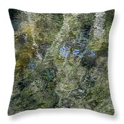 Reflection Art Throw Pillow by Roxy Hurtubise