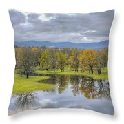 Reflection At Columbia River Gorge Throw Pillow