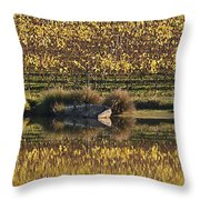Reflection-country-victoria  Throw Pillow
