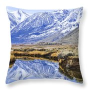 Reflection From Genoa Ln Throw Pillow