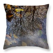 Reflection In A Puddle Throw Pillow