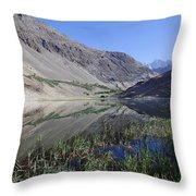 Reflection In Borith Lake Throw Pillow