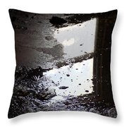Reflection In Dirty Water Throw Pillow