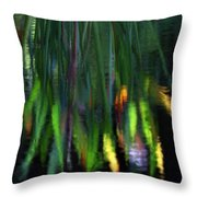 Reflection In The Pond Throw Pillow