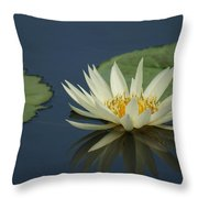 Reflection In Time...   # Throw Pillow