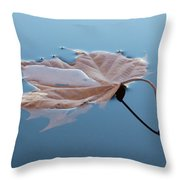 Reflection Throw Pillow by Jane Ford
