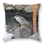 Reflection Of A Black-crowned Night Heron Throw Pillow