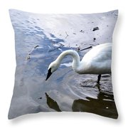 Reflection Of A Lone White Swan Throw Pillow