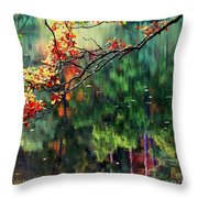 Reflection Of Autumn Throw Pillow