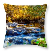 Reflection Of Autumns Natural Beauty Throw Pillow