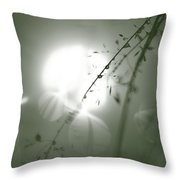 Reflection Of Grass And Sun Throw Pillow