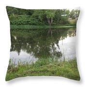 Reflection Of Life  Throw Pillow