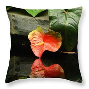 Reflection Of My Soul Throw Pillow