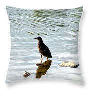 Reflection Of The Green Heron Throw Pillow