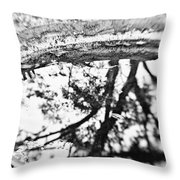 Reflection Of Time Throw Pillow