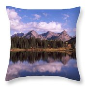 Reflection Of Trees And Clouds Throw Pillow