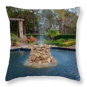 Reflection Pond At Ravine Gardens State Park Throw Pillow