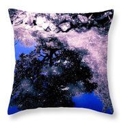 Reflection Pool Throw Pillow by Garren Zanker