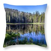 Reflections At Its Best Throw Pillow