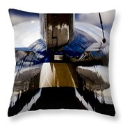 Reflections From The Back Throw Pillow