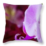 Reflections In A Water Drop Throw Pillow
