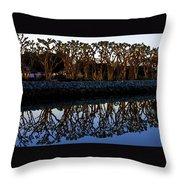 Reflections In First Light Throw Pillow