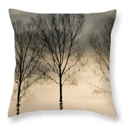 Reflections In Grey II Throw Pillow