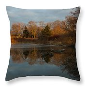 Reflections In My Favorite Pond Throw Pillow